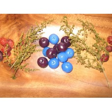 Primitive hand-made Blueberry Tarts/Embeds - Blueberry Scent